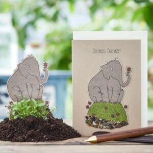Umweltbewußte Geschenke -e-typisch - Grußkarten