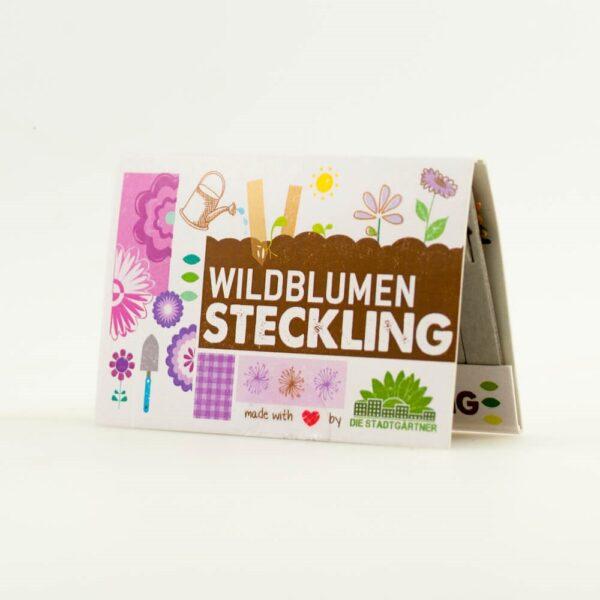 Grüne Geschenke - e-typisch - Wildblumen Steckling in Streichholzform