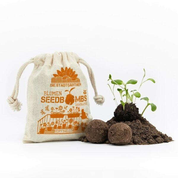 Grüne Geschenke - Seedbombs Wildblumenmischung