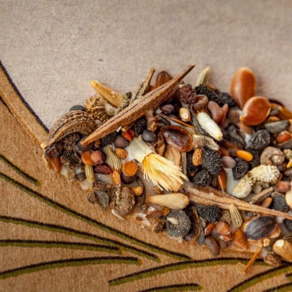 Saatstecker: Blumige Grüße 1
